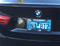 dna-biz-license