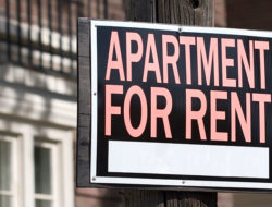 singles-apartment-for-rent