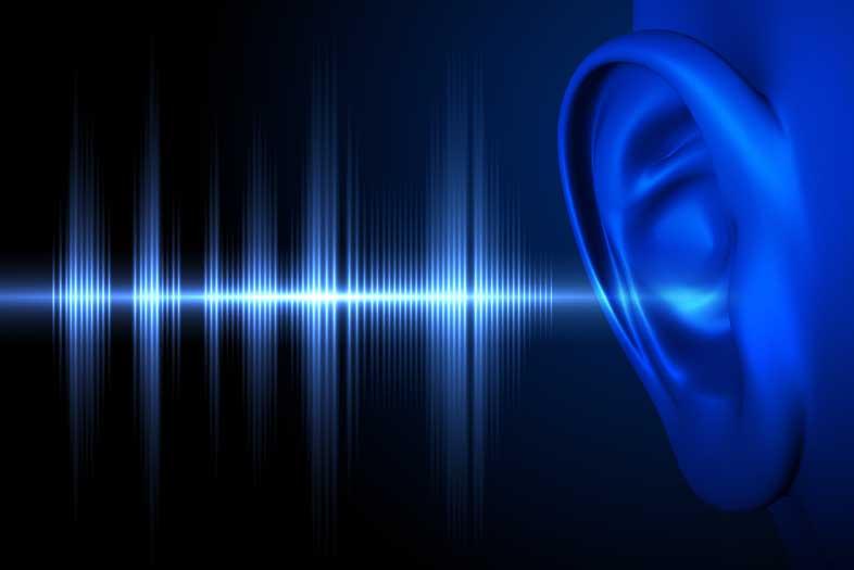 hearing loss biotech briefing
