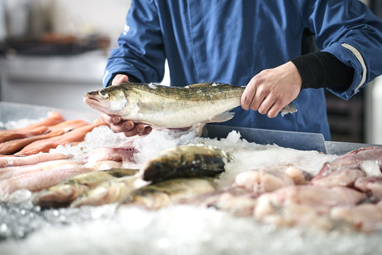 Lab-Grown Seafood Biotech Briefing